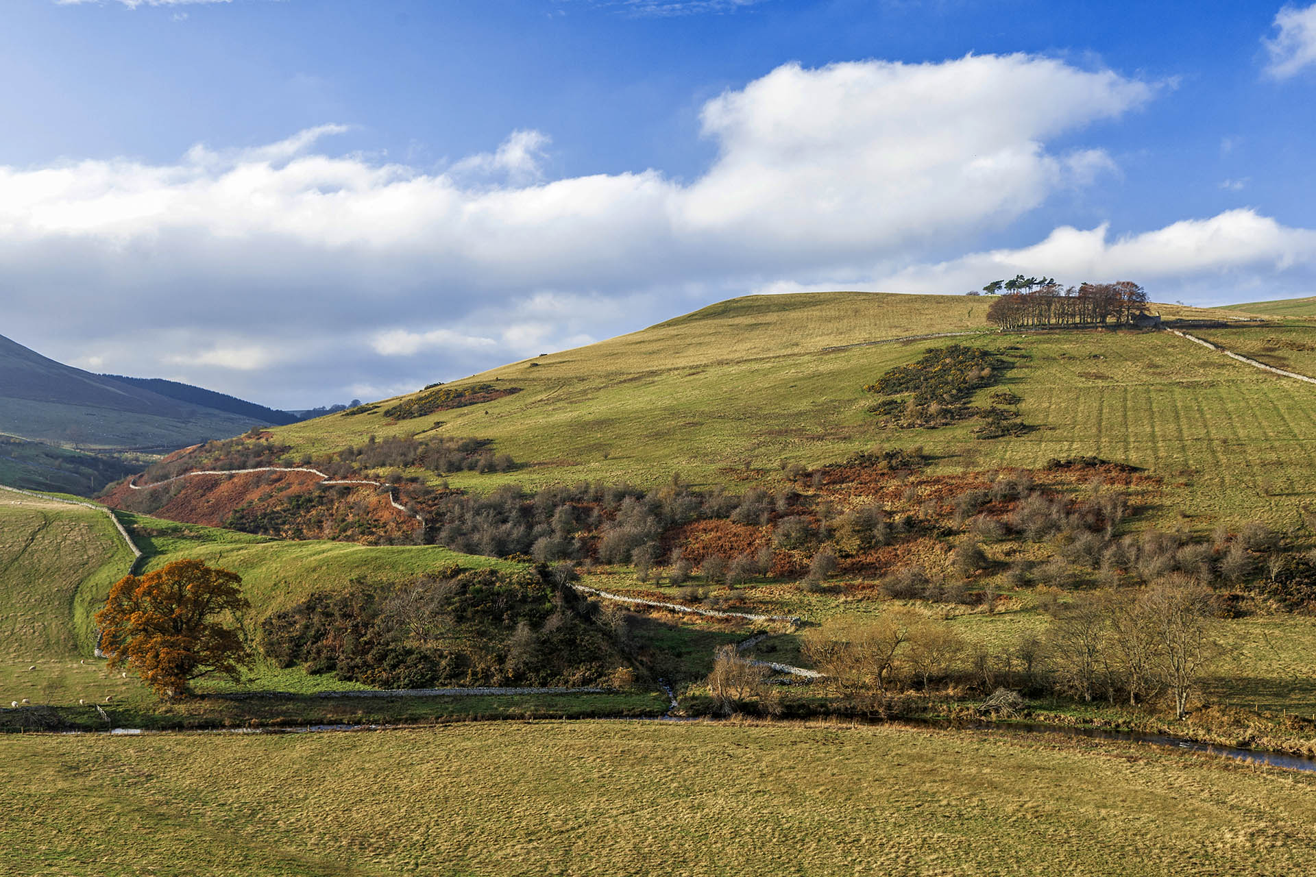 This landscape, near Morebattle, will not have changed much since Davidson's lifetime!